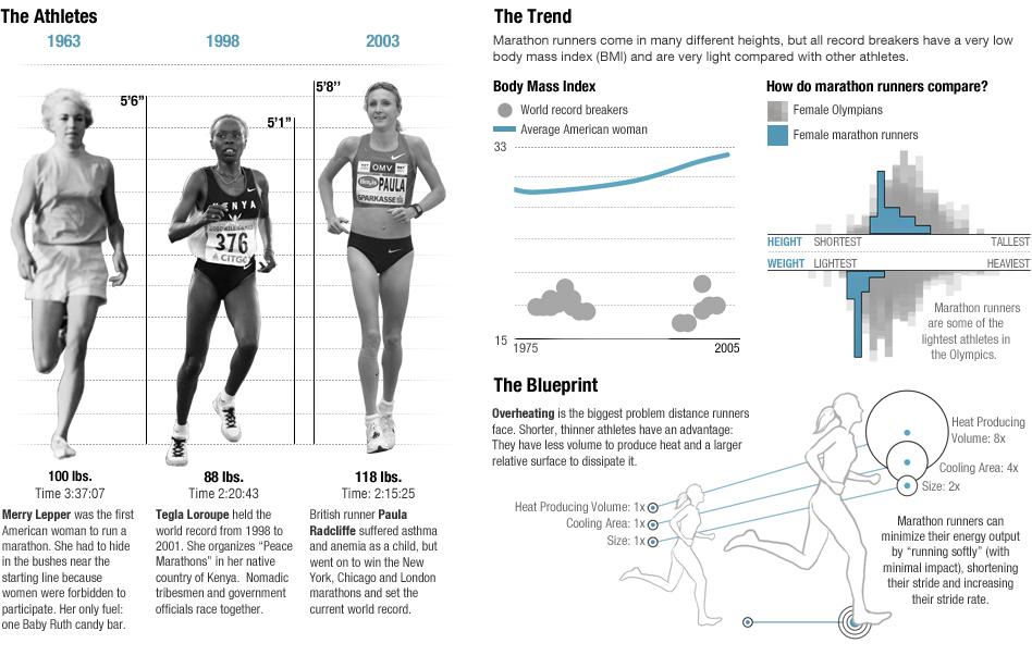 olympic-marathon-body-infographic